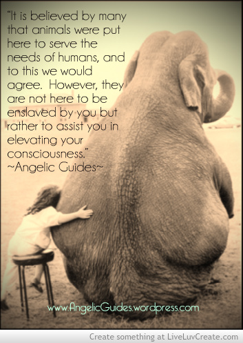 angelic_guides_quote_24